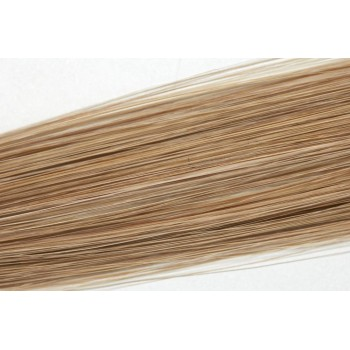 Popelavá Blond